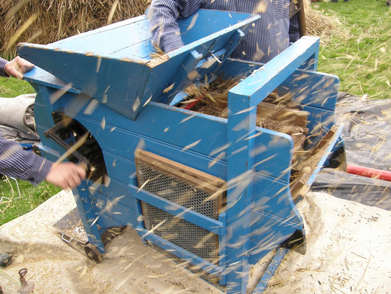Ambachtelijke graanverwerking: koren waaieren bij Onstwedder Gaarv'n.